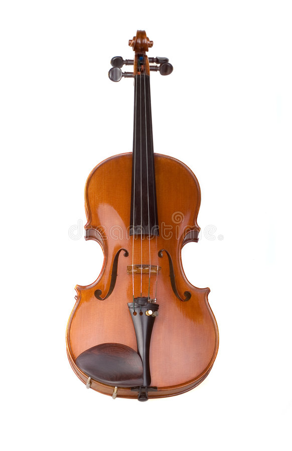 Violin. E on the white background royalty free stock image