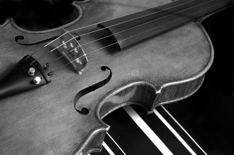 Download Violin Stock Photo - Image: 5359740