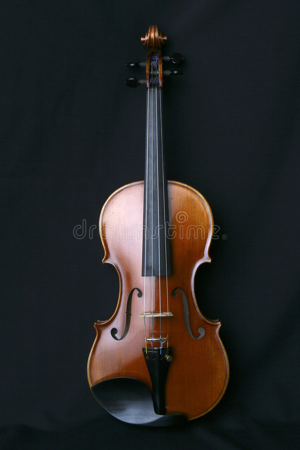 Violin. Front view of my personal violin against black background royalty free stock image