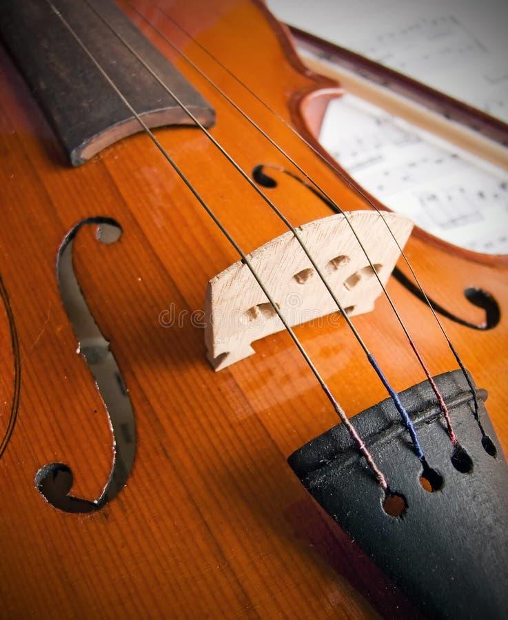 Violin. Old wood violin close up stock image