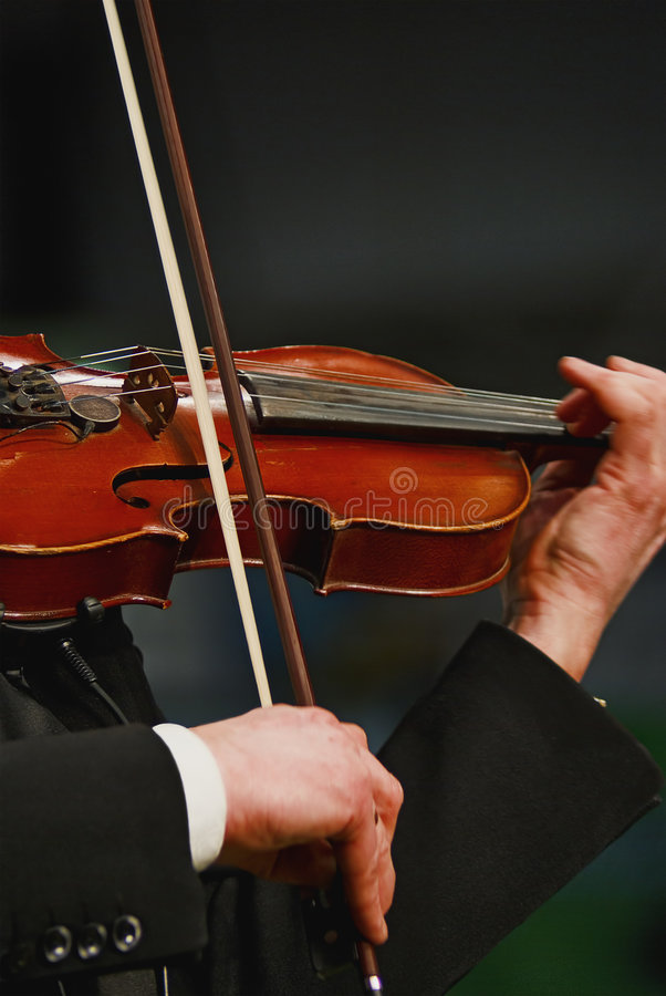 Download Violin stock photo. Image of music, performance, musical - 8956260