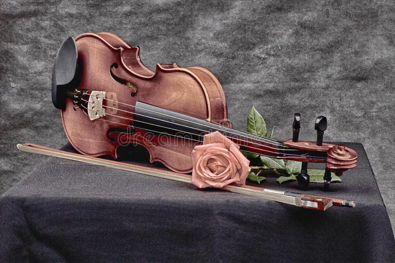 Violin in artistic mood royalty free stock photos