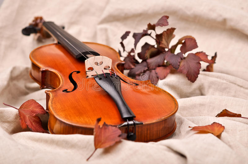 Violin and autumn leaves. On brown background stock photo