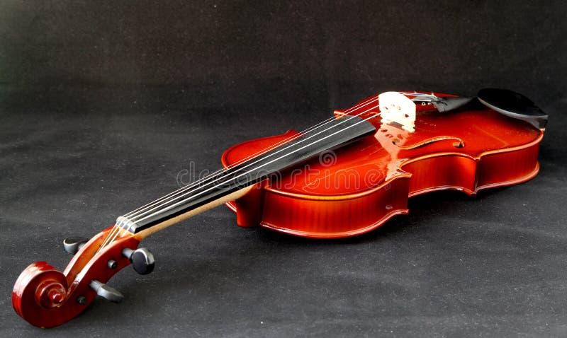 Violin. A violin on a black velvet background royalty free stock photos