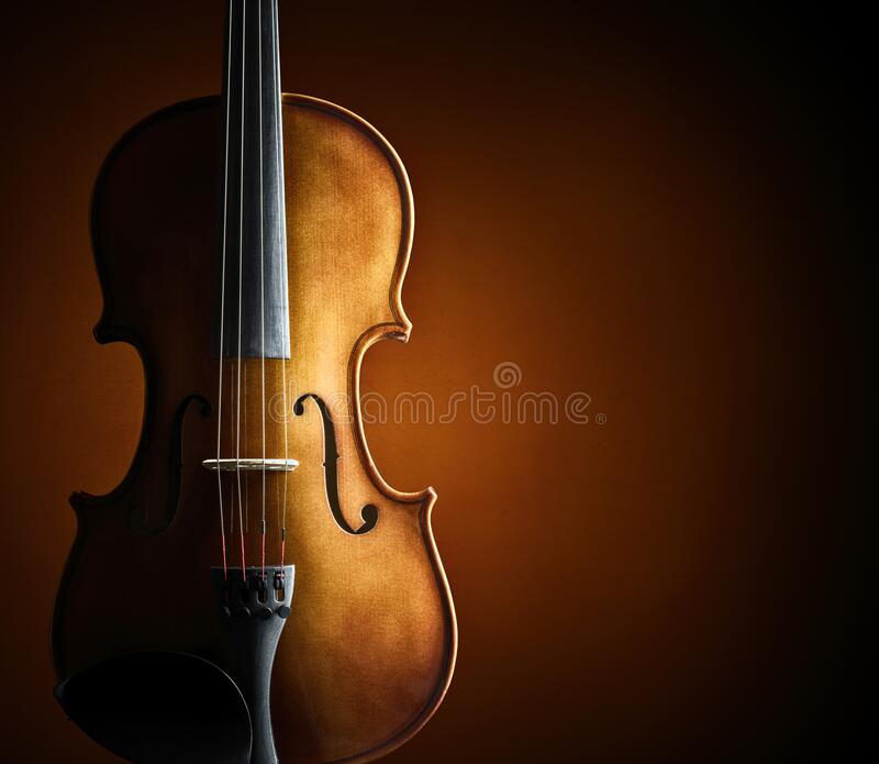 Violin and blank grunge background stock image