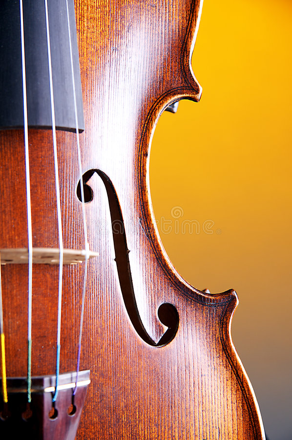 Violin Body Close Yellow Bk. A violin body closeup isolated against a bright yellow background in the vertical or portrait view stock photo