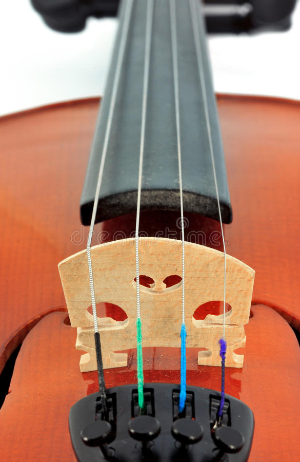 Violin detail. Bridge on the violin - detail royalty free stock photos