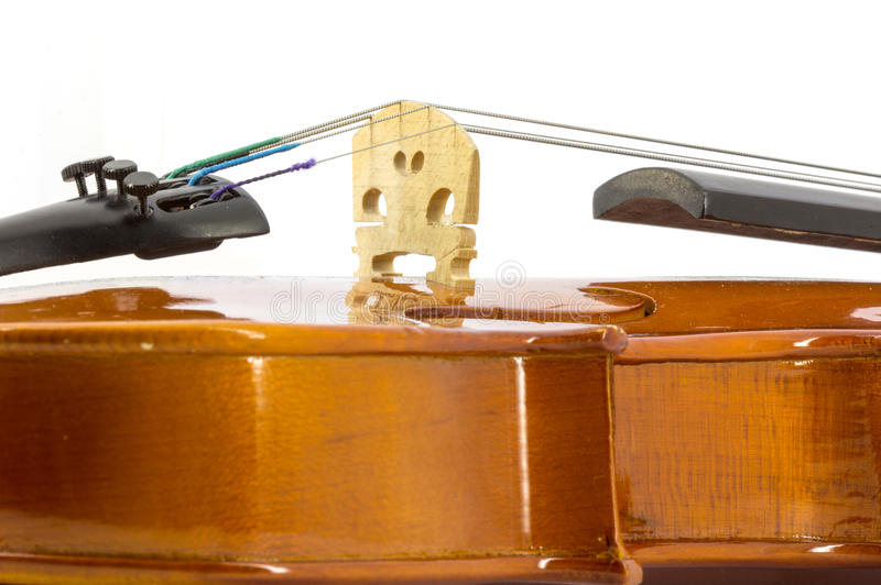 Violin. Detail of violin on the white background royalty free stock photo