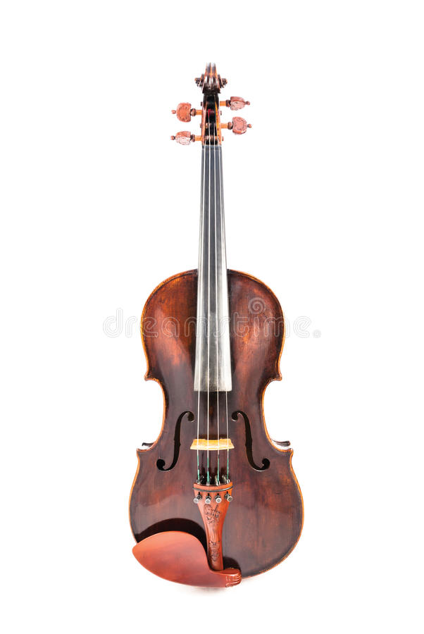 Violin or fiddle. On a white background stock photography