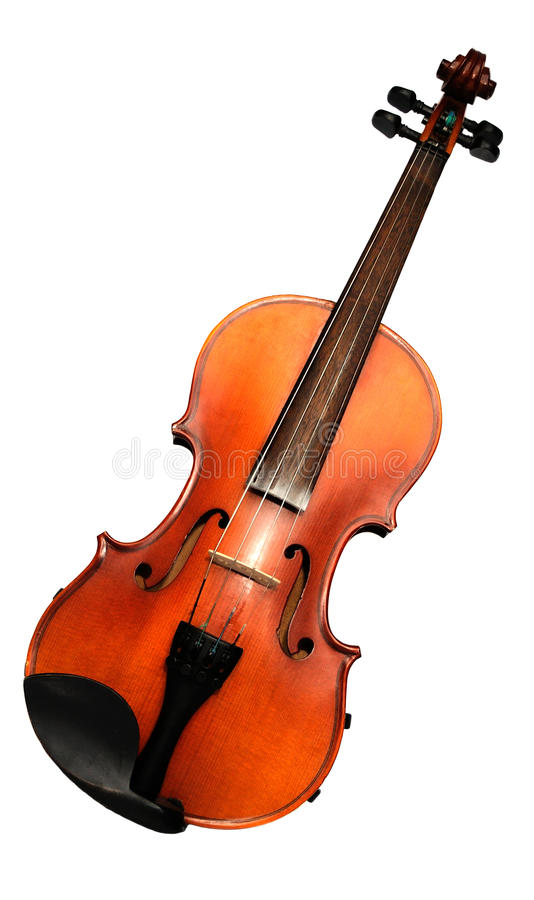 Violin front view isolated on white royalty free stock photo
