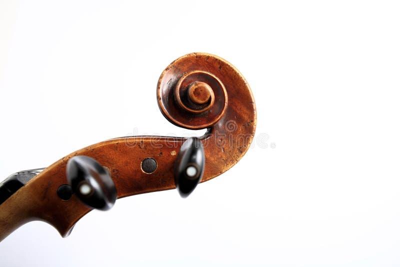 Violin head stock image