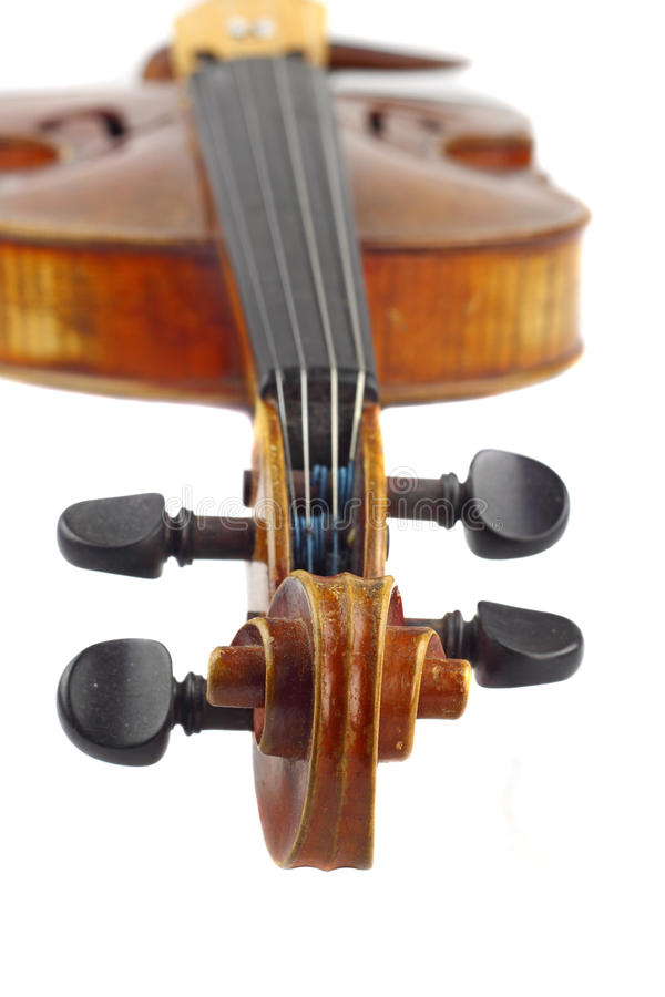 Violin head. Violin macro closeup. View on scroll and pegbox with neck and fingerboard in background royalty free stock photography
