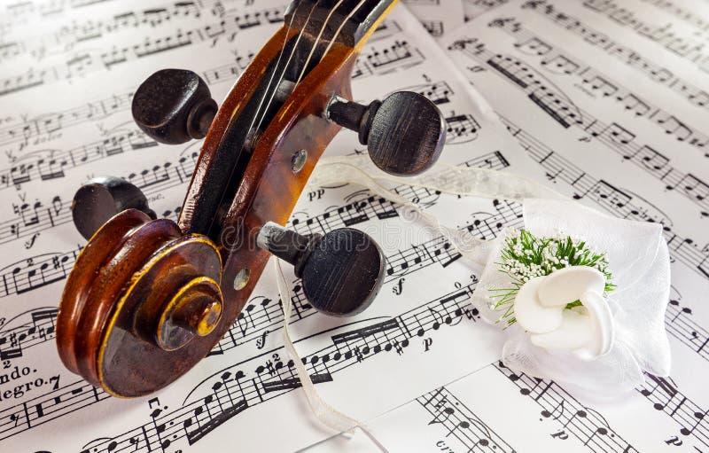 Violin head stock photography