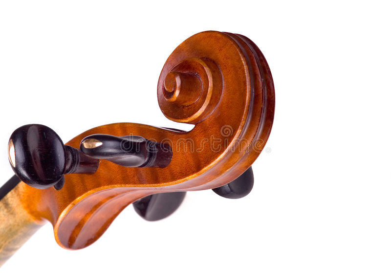 Violin head. Close-up on the white background stock photos