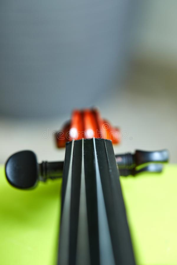 Violin head on green background royalty free stock images