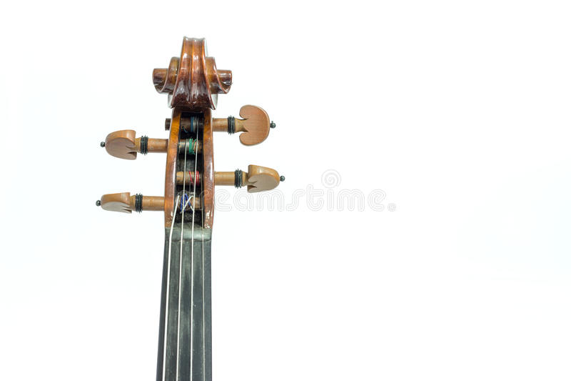 Violin head stock photo