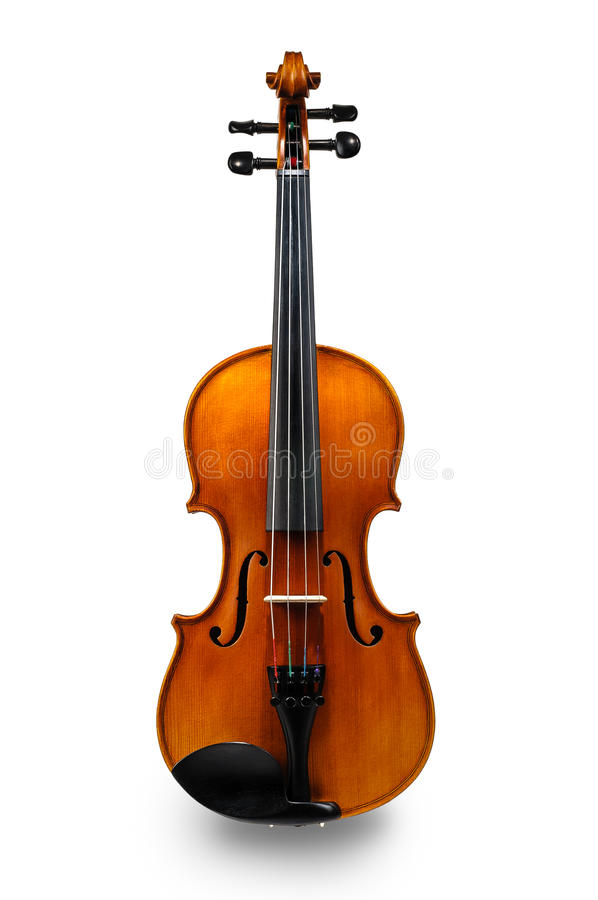 Violin isolated on white royalty free stock image