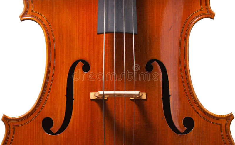 Violin isolated on white background stock image