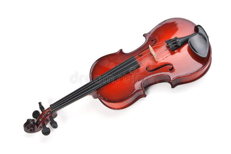 Violin isolated on white. Background stock photography
