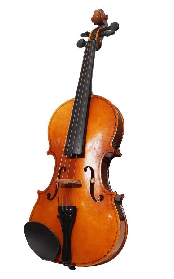 Violin isolerat i vit bakgrund arkivbilder