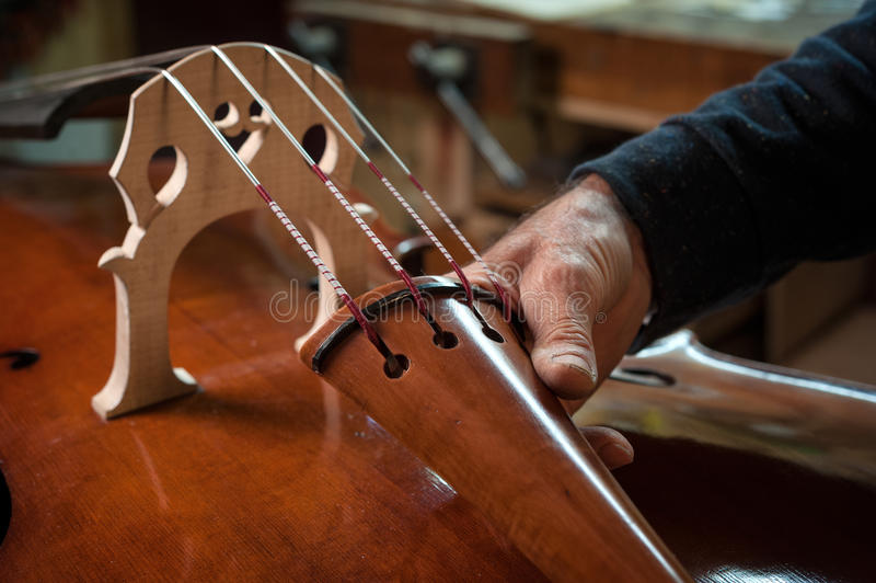 The violin-maker. The master luthier builds a double bass in his workshop stock images