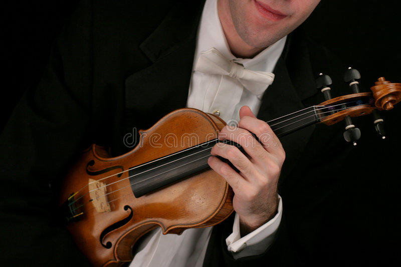 Download Violin musician stock image. Image of violins, strings - 408351