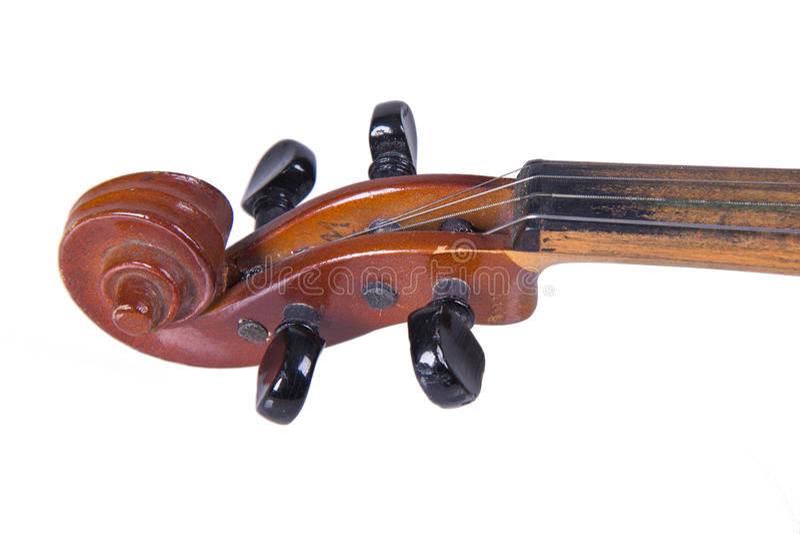 Violin, pegbox, scroll royalty free stock image