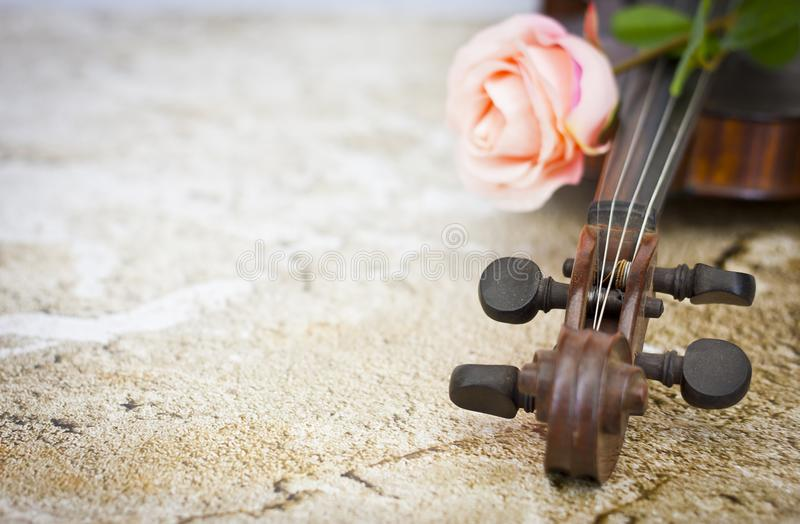 Violin and pink rose stock photo