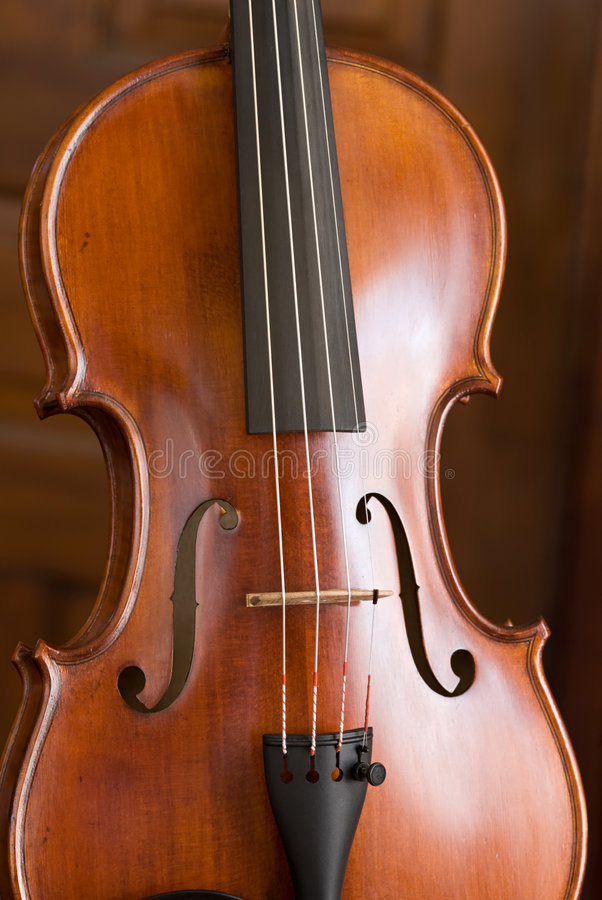 Violin Portrait. Close-up of body of a violin royalty free stock photography