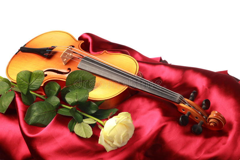 A violin and a red rose royalty free stock photo