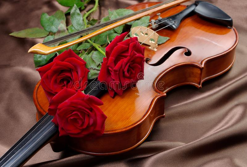 Violin and red roses on a silk background. close up. royalty free stock photos