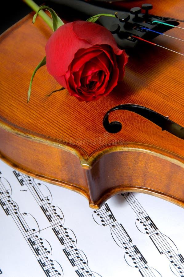 Violin, rose and sheet music royalty free stock photo
