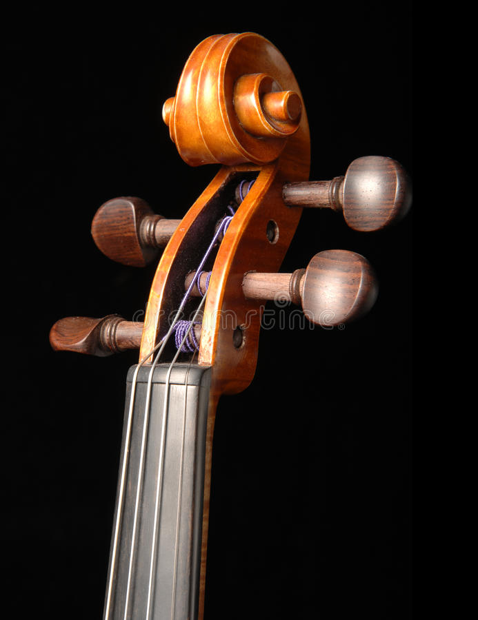 Violin scroll and pegbox stock images