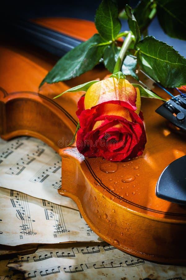 Free Violin Sheet Music And Rose Royalty Free Stock Photos - 37898118