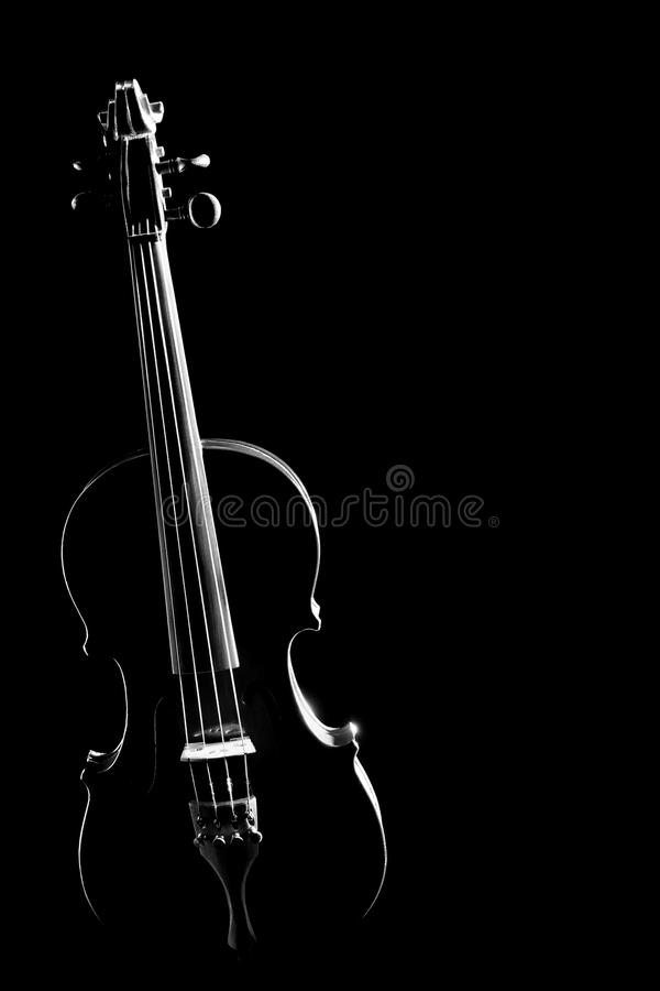 Violin silhouette strings isolated stock photo