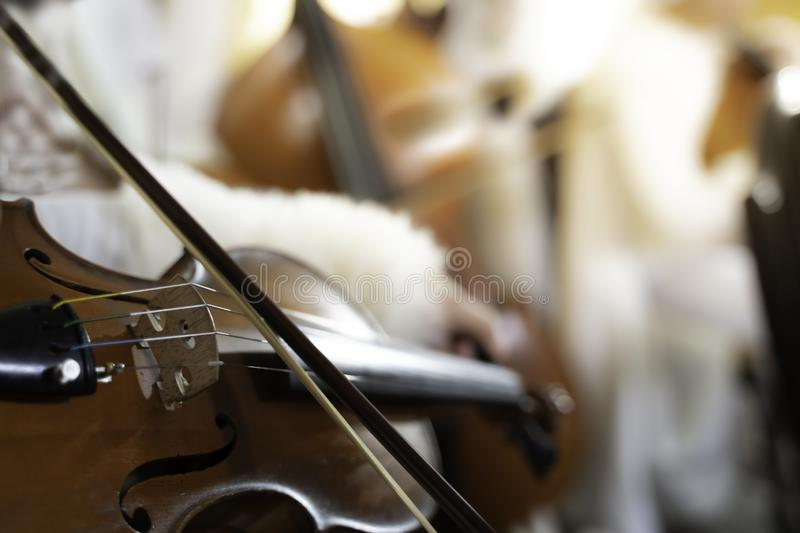 Violin strings in Party background.shallow focus effect. Style, instruments, isolated, playing, vintage, tuned, materials, traditional, wires, conceptual royalty free stock photos
