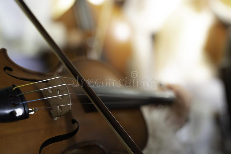 Violin strings in Party background.shallow focus effect. Style, instruments, isolated, playing, vintage, tuned, materials, traditional, wires, conceptual royalty free stock image