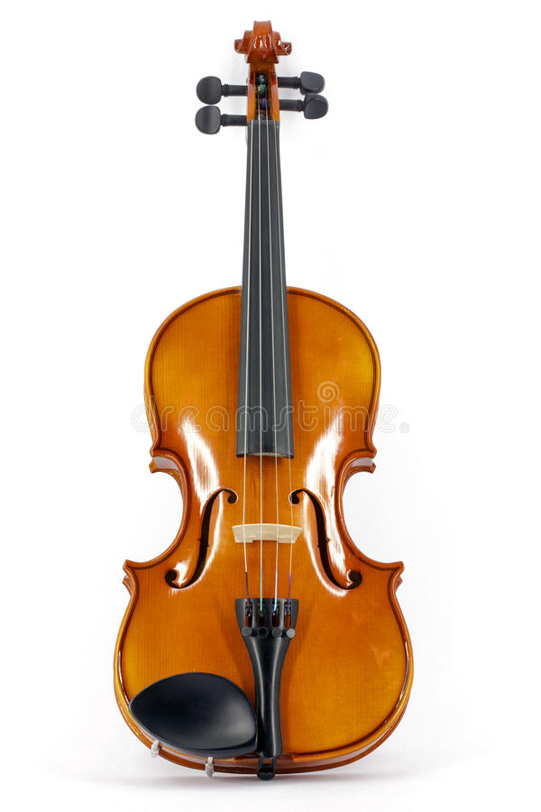 Violin. In vertical position isolated on white royalty free stock images