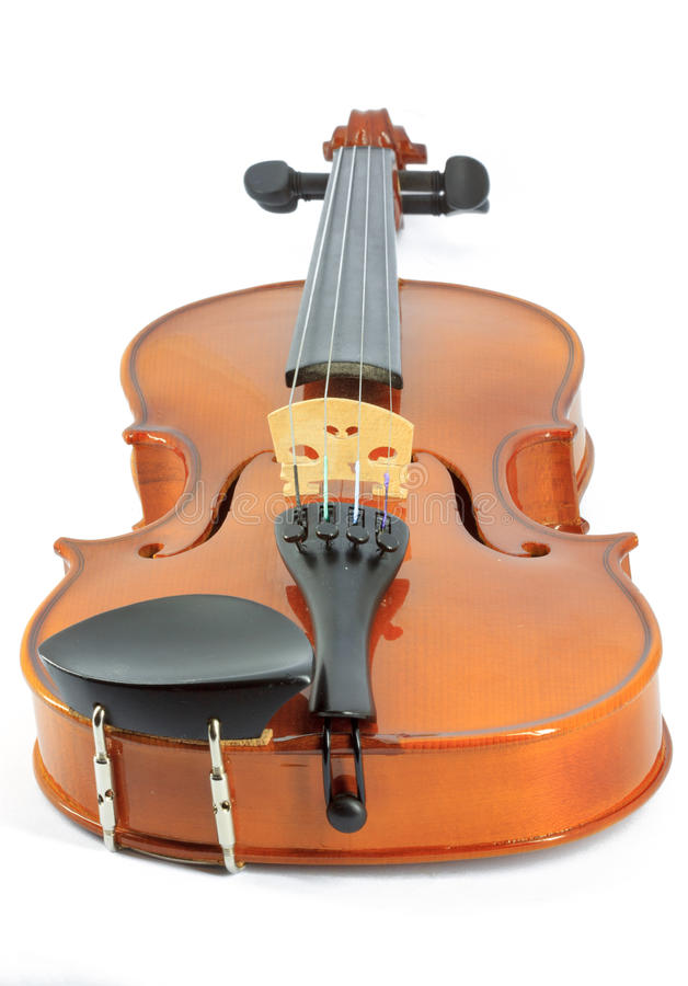 Violin. On the white background stock photos