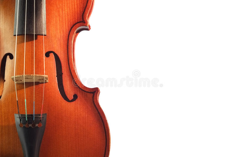 Violin. On a white background stock photography