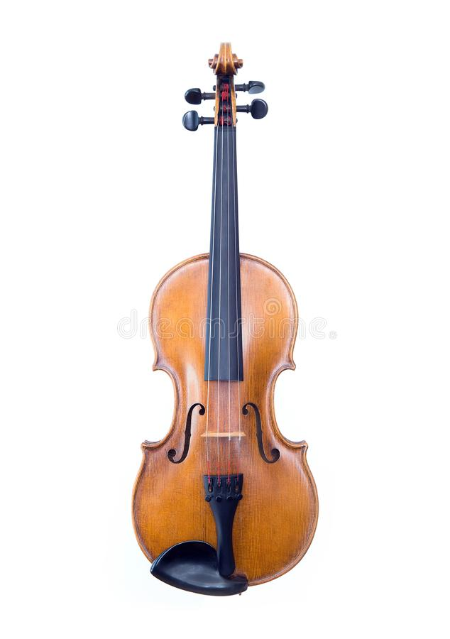 Violin on white background stock image