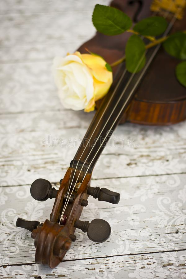 Violin and yellow rose royalty free stock photography