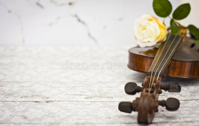 Violin and yellow rose royalty free stock photo