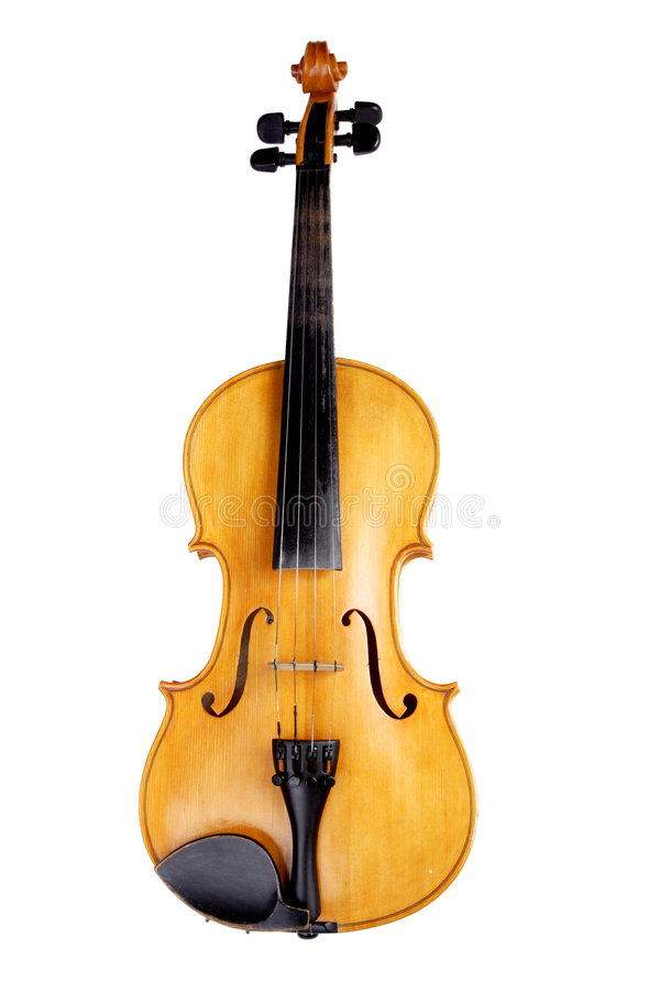 violin1 obrazy royalty free