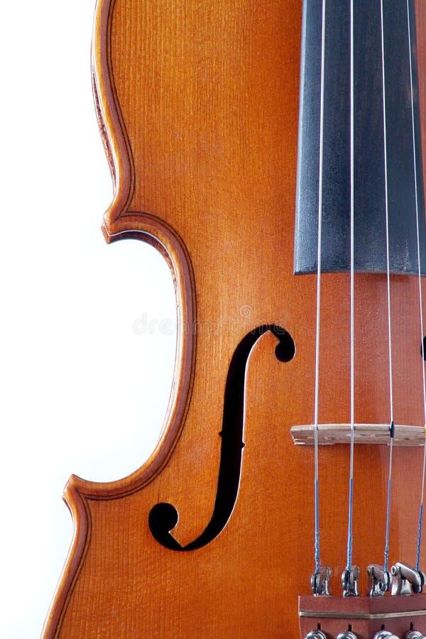 Violin12.JPG photographie stock libre de droits