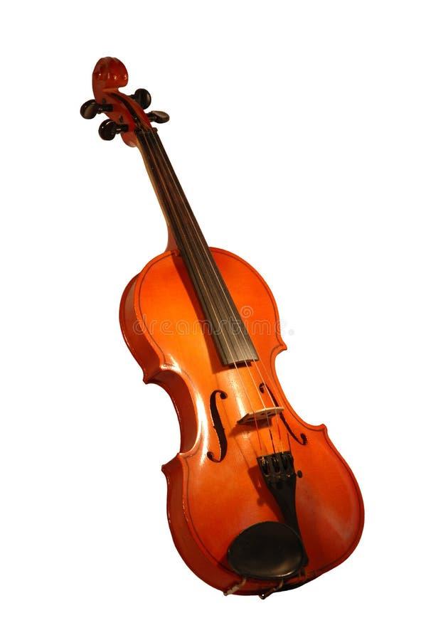 Violine stock photography