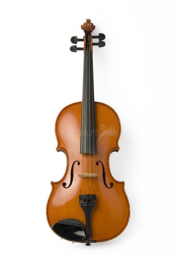 Violine auf Weiß stockbilder