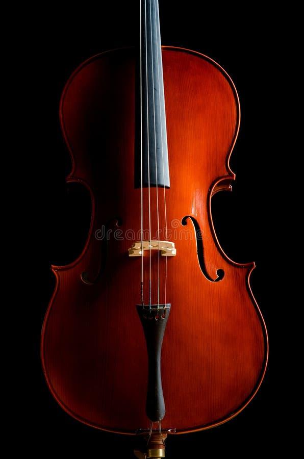 Violine Im Dunklen Raum Lizenzfreie Stockfotos