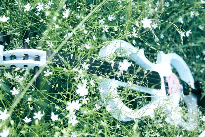 Violine im Gras lizenzfreies stockfoto