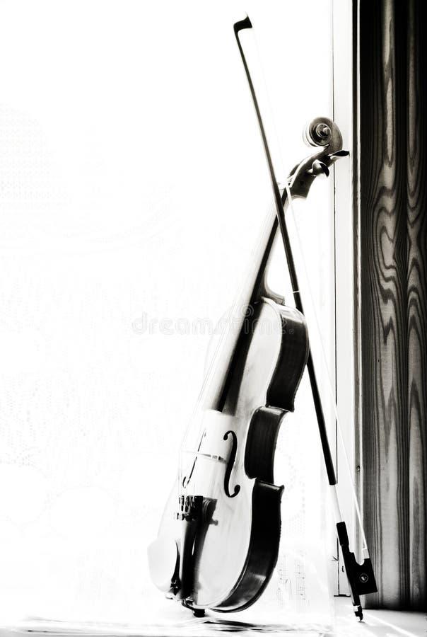 Violine mit Noten und Blumen die Front der Geige auf w lizenzfreie stockfotos